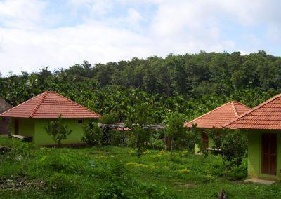 amara-homestay-dandeli-1