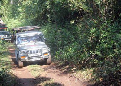 Jeep Jungle Safari